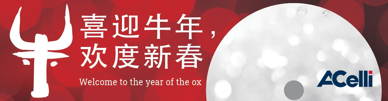 China 2021 new years Eve banner